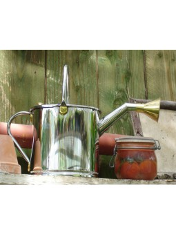 Stainless stell watering can 2 L